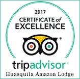 Trip Advisor Huasquila Amazon Lodge